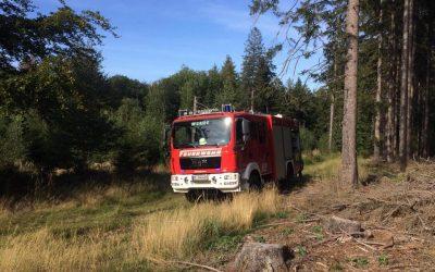 Einsatz brennt Baum – 15:34 Uhr